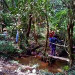 Ecoturismo / Caminha de aventura no sul de minas