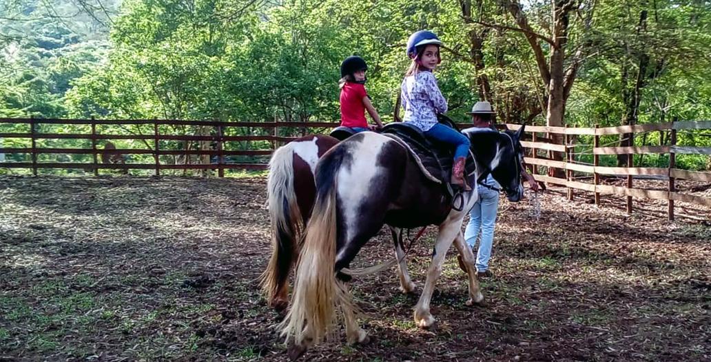 guias especializados e equipamentos de segurança para cavalgada