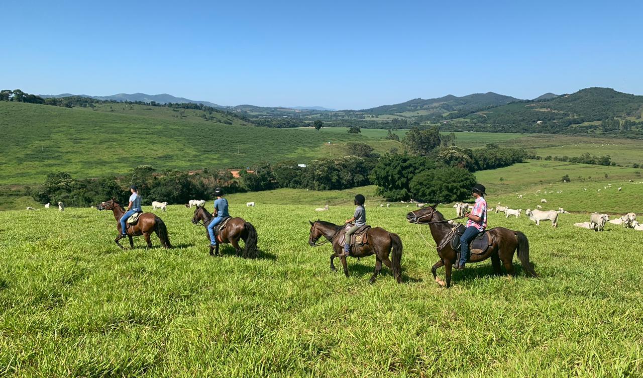 Esportes com cavalos - cavalgadas